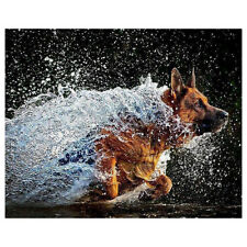 DIY Diamond Painting German Shepherd Dog 5D Diamond Embroidery Cross Stitch F6J4