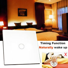 WiFi Control Panel Touch Wall Switch 1 Way 1 Gang Compatible Work with Alexa 8A
