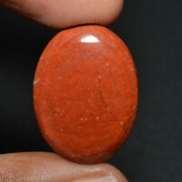 Cts. 20.00 Natural Beautiful Red Jasper Cabochon Oval Cab Loose Gemstones