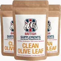 Clean Olive Leaf Extract Capsules 5,600mg (224mg Oleurpein) British Supplements