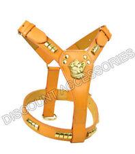 Harnais rembourrés en cuir pour chien