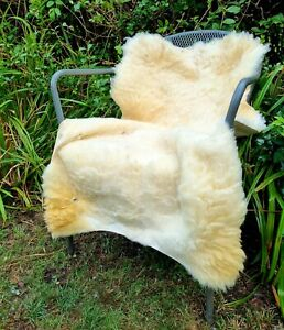 XXL British Cream Sheepskin Rug - 105cm by 70cm A++ (2923)