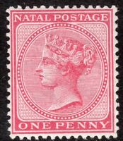 South Africa Natal 1874 bright rose 1d crown CC perf 14 mint SG67