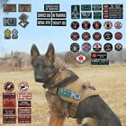 Service DOG THERAPY PET Patch Medic Working Dog In Training