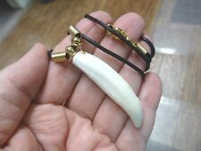 "(G155-3A) 2-1/8"" GATOR ALLIGATOR Tooth teeth black cord GOLD NECKLACE gators"