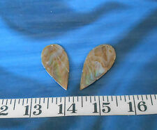 ~ Mother-of-Pearl (Black-Lip Mop) Shell Earring Blanks ~ Polished Taupe/Ivory ~