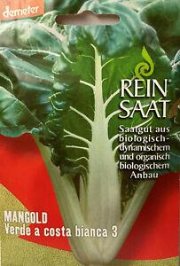 Mangold Verde a costa bianca 3 - Saatgut - Samen Demeter aus biologischem Anbau