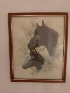 Doris Scott Nelson Vintage Framed Print Of Black Mare & Foal