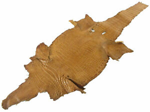 PELGIO Genuine Freshwater Crocodile Belly Skin Leather Hide Pelt Tan Brown
