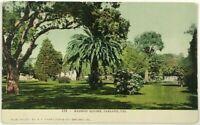Madison Square Oakland California CA Street View Park Undivided Vintage Postcard