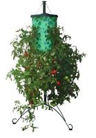 Topsy Turvy~Upside Down Tomato Tree, Balcony or Patio~As Seen On TV