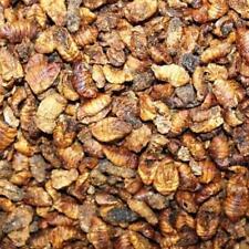 (Eur 2,18/L ) 10L vers A Soie Nourriture pour Poisson Koï Silkworm Repas