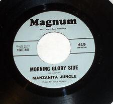 Manzanita Jungle: Morning Glory Side / Colorado Sun  [Unplayed Copy]