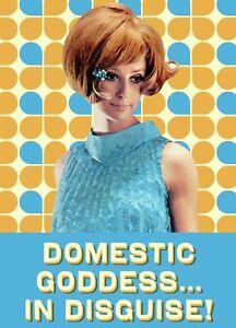Domestic Goddess steel funny fridge magnet   (hb)
