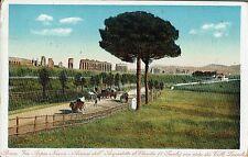 ROMA - Via Appia Nuova - Acquedotto Claudio - Colli Laziali - Rif. 171 PI