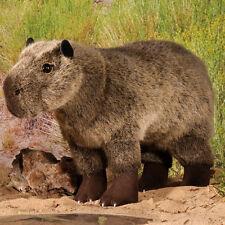 Capybara collectable soft toy by Kosen / Kösen - 6530 - 34cm