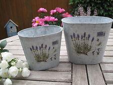 "2er Set Shabby Pflanztöpfe ""Lavendelprint"" Blumentopf Lavendel Landhaus Vase"