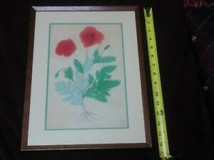 Original Pastel Drawing Opium Poppy Botanical Signed Vintage Art Flowers Floral
