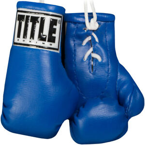 """Title Boxing 5"""" Authentic Detailed Mini Lace Up Gloves"""