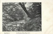 On The Bronx River, White Plains NY 1914
