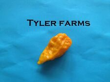 15+ Yellow Ghost Pepper (Bhut Jolokia) Seeds (Hot, exotic chili, chile)