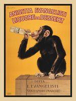 Anisetta Evangelisti by Carlo Biscaretti Art Print Drinking Monkey Poster 24x18
