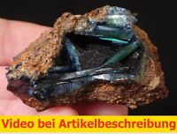 7028 Vivianit vivianite 5*6*3 cm Cabeça do Cachorro Brasilien MOVIE