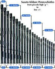 Susato Kildare Pennywhistle, L-Series, 2 keys. Choose pitch: F#, F, E, Eb or D