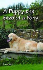 Un cucciolo le dimensioni di un pony dal Prof. Grace Dorey (libro in brossura, 2011)