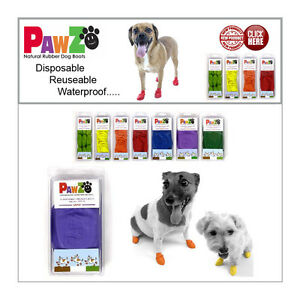 Pawz Waterproof Dog Boots Free Shipping