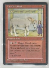 Magic Dwarven Pony - Pony dei Nani Origini HL Inglese