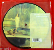 "RED HOT CHILI PEPPERS -Desecration Smile- Rare UK 7"" Picture Disc (Vinyl Record)"