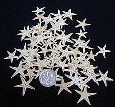 100 pcs. Natural color  Real Mini Tiny Flat Starfish 10 -20mm