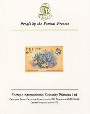 Belize 5113 - 1984 Vita Marina 60c HUNGARIAN SU CARTA FORMATO PROVA internazionale