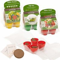 Plant From Seeds and Grow Your Own Pot Plants Set Kit Garden