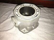 Replated Arctic Cat 1000 Cylinder 3005-222 Thundercat Pantera 91B4 $100 CORE