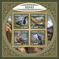 Sierra Leone Birds on Stamps 2017 MNH Doves Pigeons Turtle Dove 4v M/S