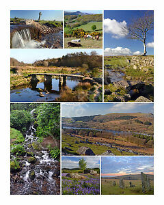 Dartmoor Photographic Collage A2 Photo Canvas 16 x 22 inches (UK)