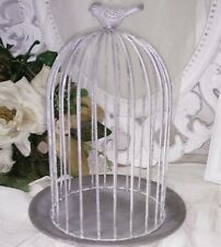 Campana Cupola Metallo piatti in fil di ferro uccello shabby vintage decorazione