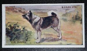 ELK HOUND   Superb  Original 1923  Vintage Colour Card