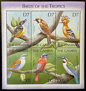 GAMBIA BIRDS OF THE TROPICS STAMPS SHEET 2000 MNH WILDLIFE FAUNA NATURE HOOPOE