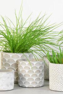 Grey Concrete Plant Pot Cover Planter White Fans Design, Retro Geometric 9x11cm