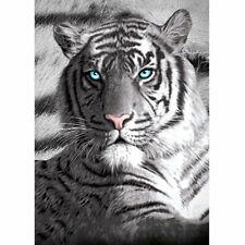 Blue Eyes Tiger Beach Pool Bath Towel   100% Cotton   Animal Photographic print