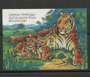 Tigers Cubs Nature Protection MNH Souvenir Sheet 1992 Russia #B185
