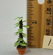 Dollhouse Miniature 1/4 scale split leaf philodendron #11