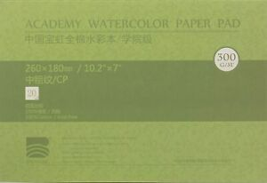 BAOHONG Academy Grade Watercolor Painting Paper, 100%Cotton Cold Press, 20 Sheet