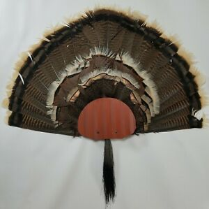 Turkey Fan and Beard Mounting Kit (Rustic Red)