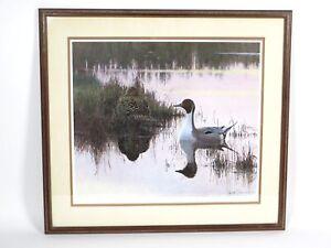 Framed Lars Jonsson Evening Light Pintails Duck Print Signed 203/950