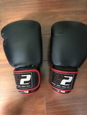 C2 Boxing Gloves 16 Oz
