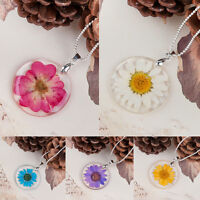 Craft Transparent Round Resin Dried Flower Daisy Pendant Necklace Chain Jewelry